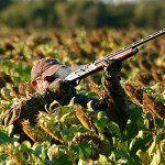 bird-hunting-bolivia-009