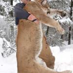 hunting-canada-005