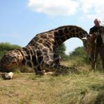 hunting-namibia-057