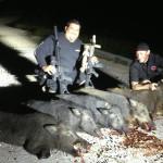 hunting-pig-texas-009
