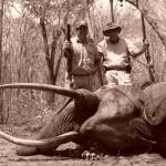 hunting-tanzania-012