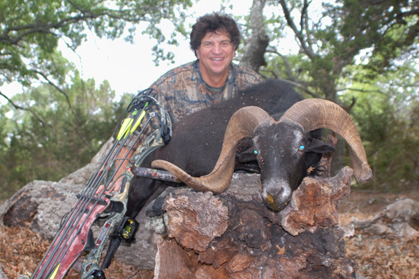 helicopter pig hunting australia with Hunting Texas on Pig Huntingmangamukacolin Blade Nortoncg 838a8a7b608380da741a31 furthermore 6yq8QiaCA1M further 1jci2TfLIOw further Pig Hunt Nt besides 2017.
