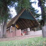 hunting-zimbabwe-003
