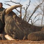 hunting-zimbabwe-005