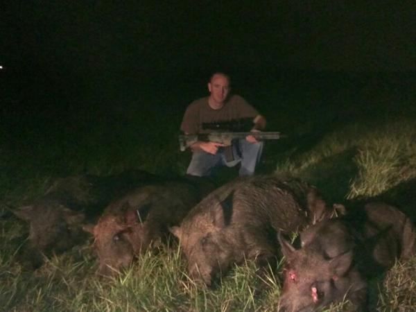 thermal-pig-hunt