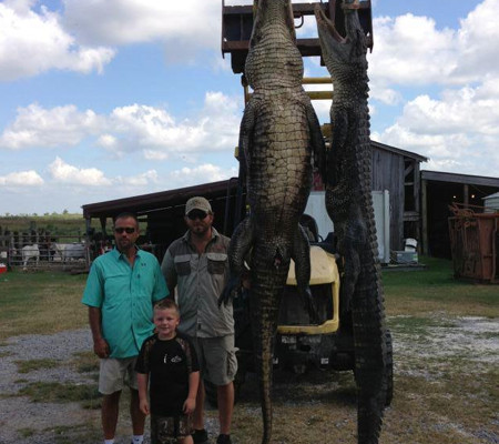 alligator-hunts