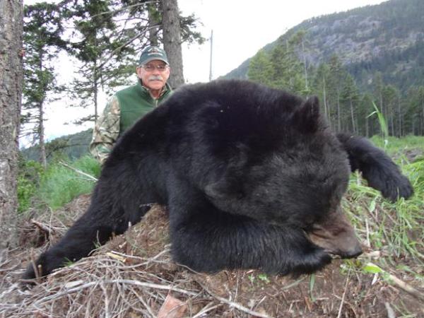 black-bear-hunting