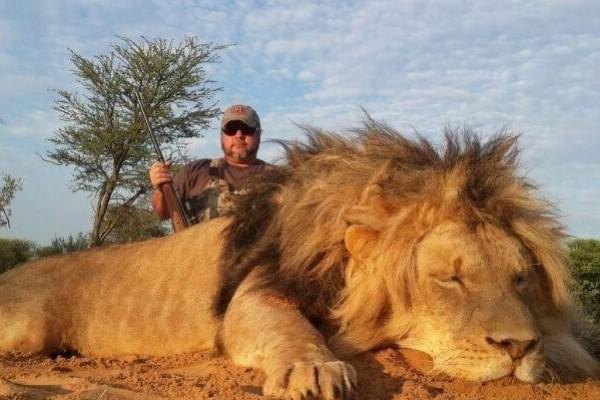 lion-hunt