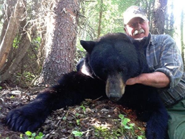 spring-black-bear-hunt-canada