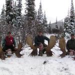 BC-Moose-Hunting