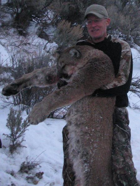 cougar-hunt