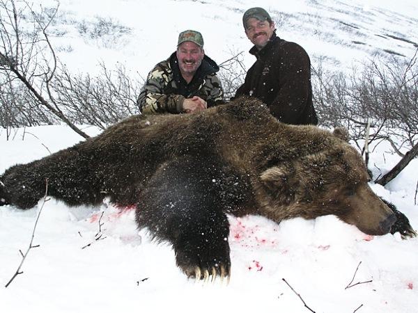 hunt-brown-bear