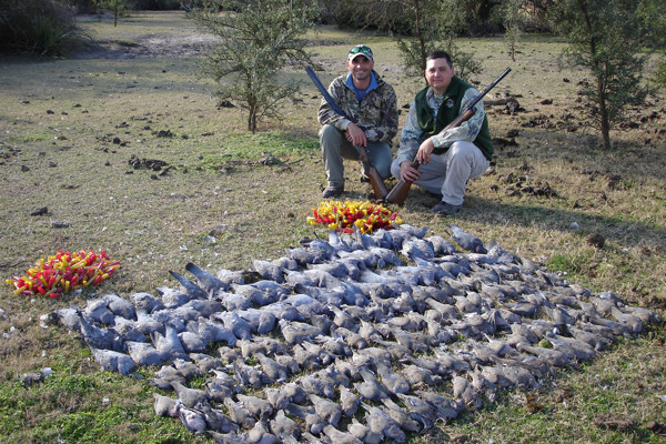 Argentina Dove Hunting & Dorado Fishing