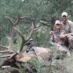 elk-hunting-new-mexico