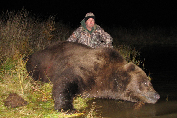 Brown Bear Hunt Alaska Peninsula