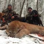 cougar-hunt-canada-01