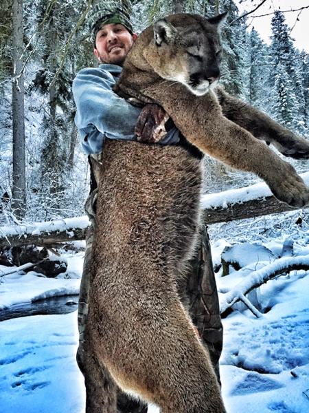 cougar-hunt-canada-03