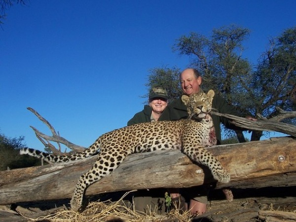 leopard-hunting-namibia