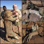 Incredible Deal Leopard Hunt in Namibia