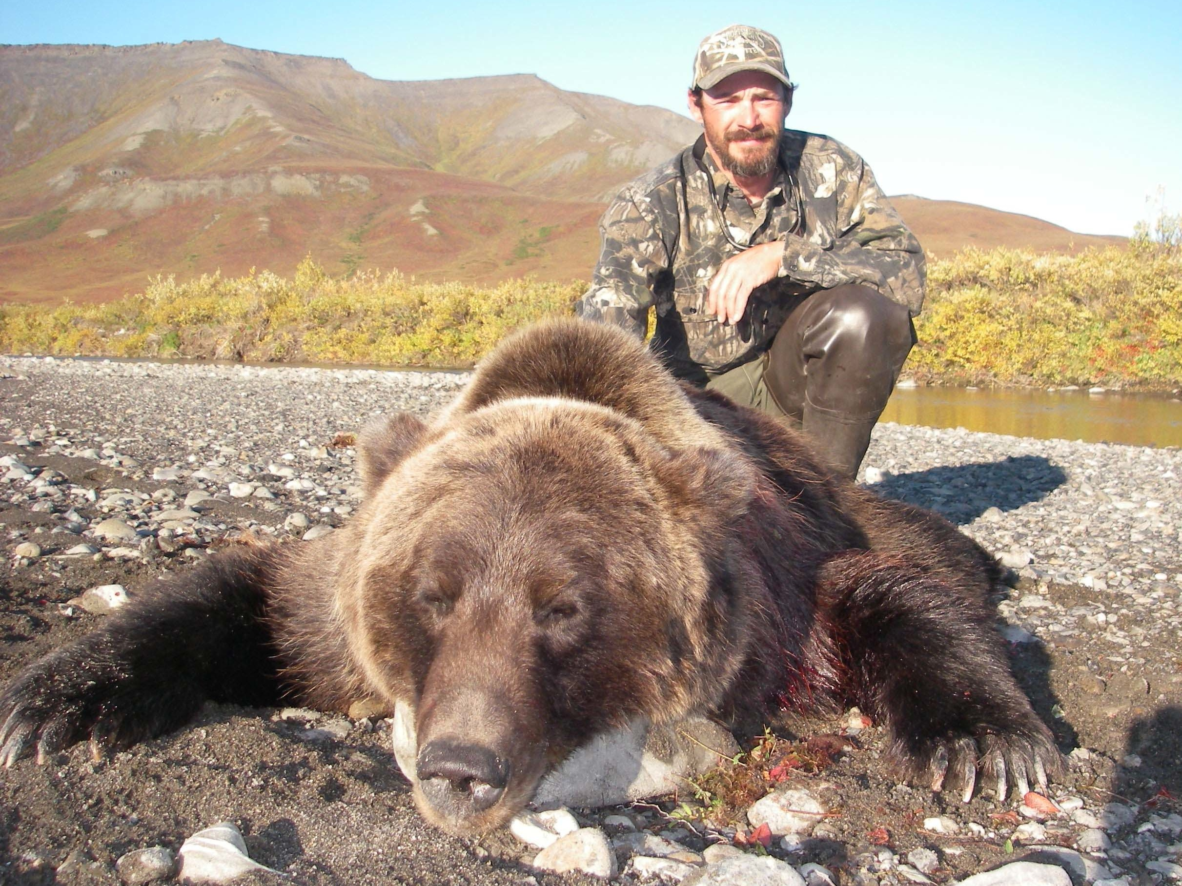 brown-bear-hunt