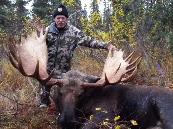 moose-hunt-alaska