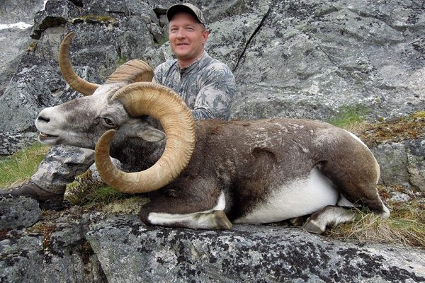 Yukon Stone Sheep Hunt