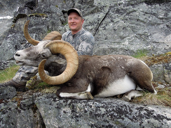 yukon-stone-sheep-hunt