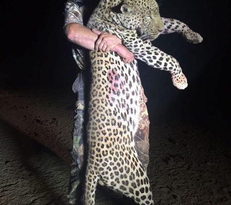 Leopard Hunt Special